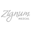 Logo_100x100 zignum